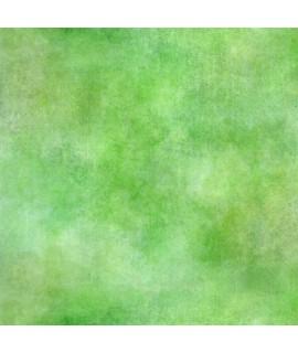 Okładka - Meadow Impressions